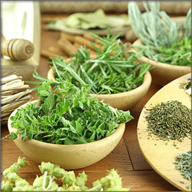 Mountain Tea and Herbs - Products of Thassos Island, Greece