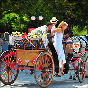 Horse Carriage on Thassos Island, Greece