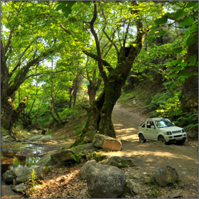Offroad Driving on Thassos Island, Greece