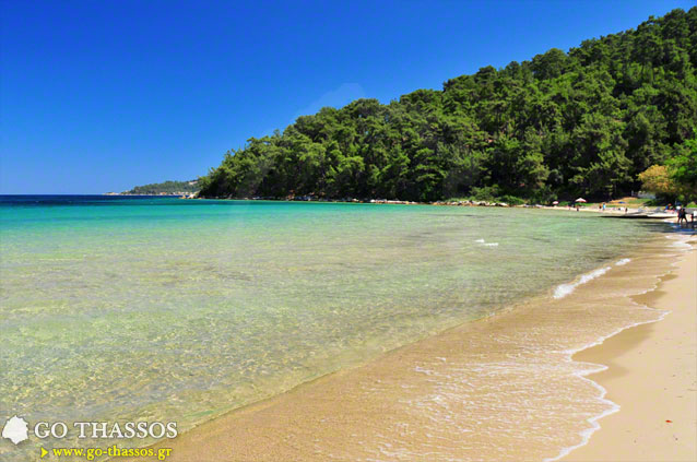 Glyfada Beach  Go Thassos